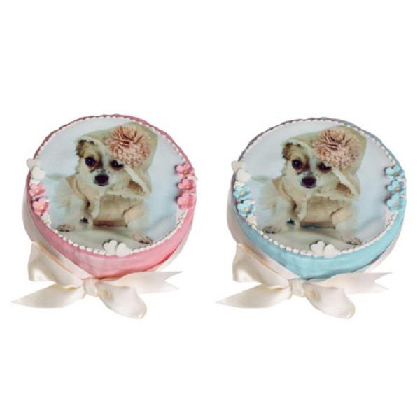 Dolcimpronte - Torta Compleanno Per Cani Personalizzabile 300 GR