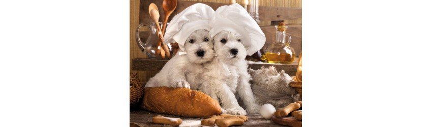 Italian Pets' Bakery